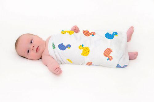 Great Swandoodle - Love A Duck ~ Sold Out!